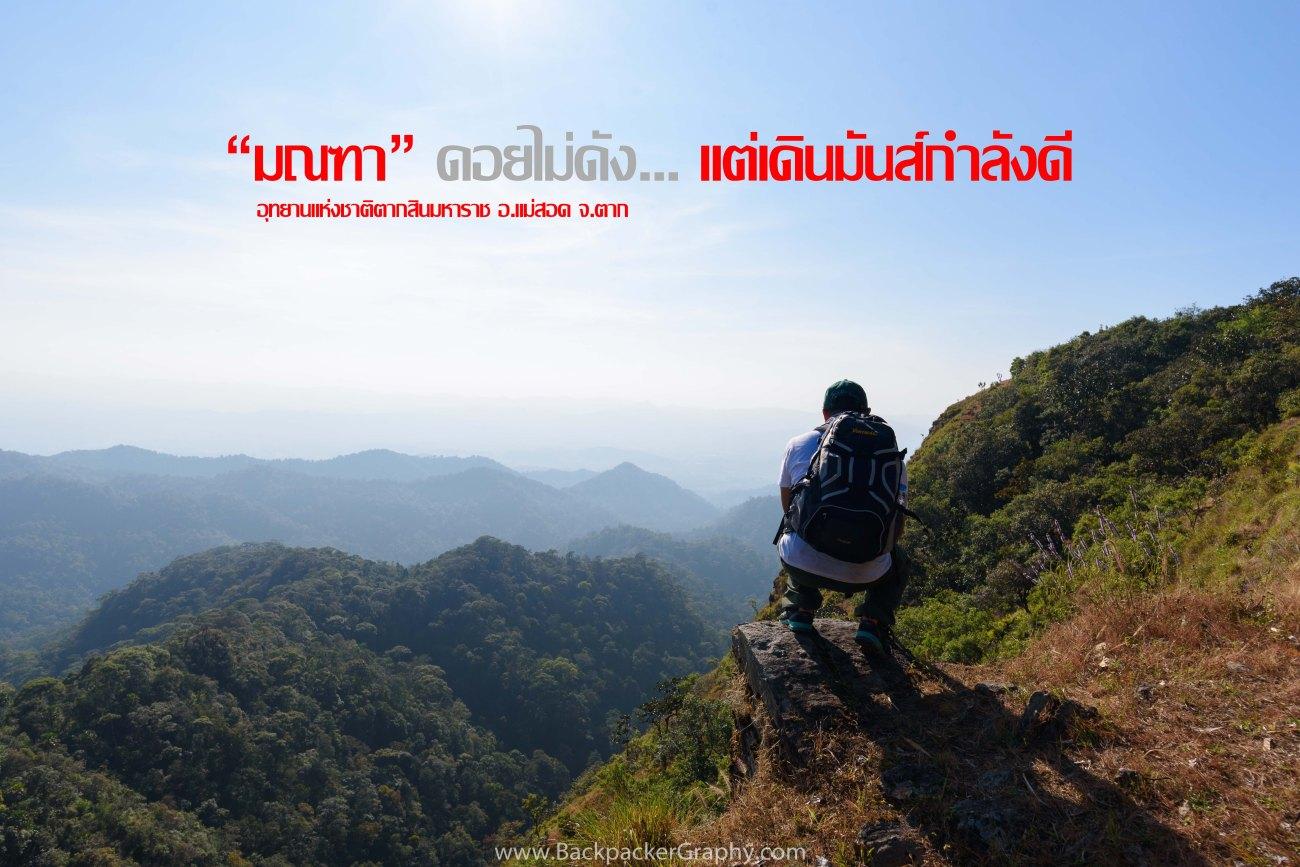 TAE_9724 Cover Photo.jpg